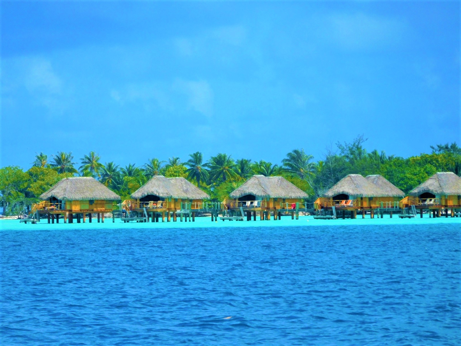 10 Interesting facts you didn't know about Tahiti, Moorea ...